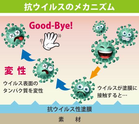 抗ウイルスのメカニズム
